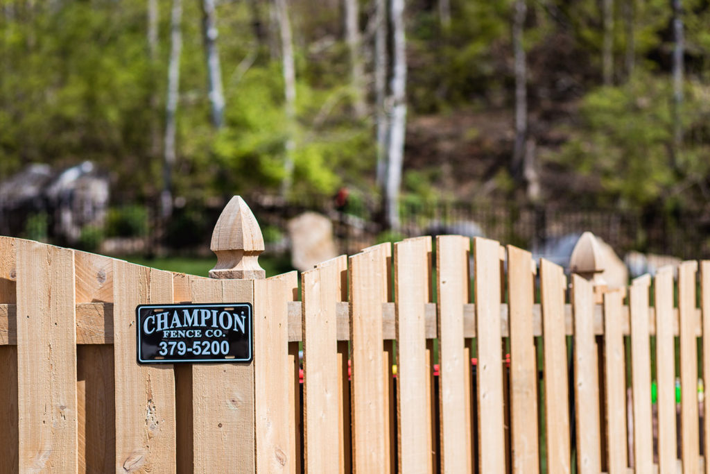 Cypress Cut Arch Shadow Box Fence
